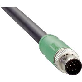 Câble M12 12 pôle mâle droit
