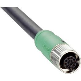 Câble M12 12 pôle fem droit